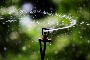 Sprinkler_Irrigation_-_Sprinkler_head