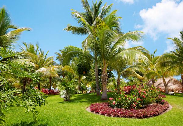 Dise o de jardines y paisajismo en sevilla for Diseno de jardines online gratis