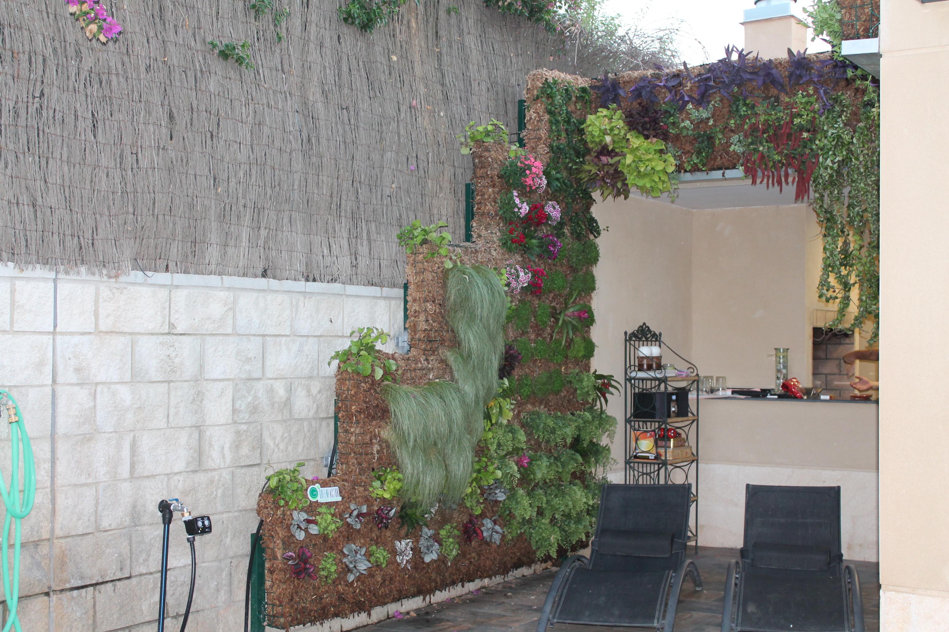 Otro ejemplo de jard n vertical jardineria sevilla for Jardin vertical sevilla