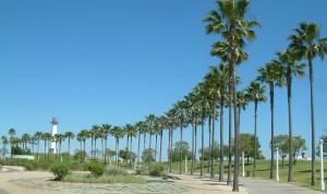 Long_Beach_03