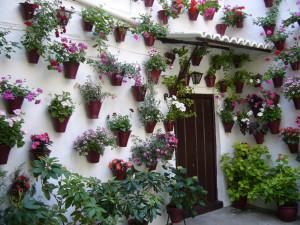 jardines verticales flores