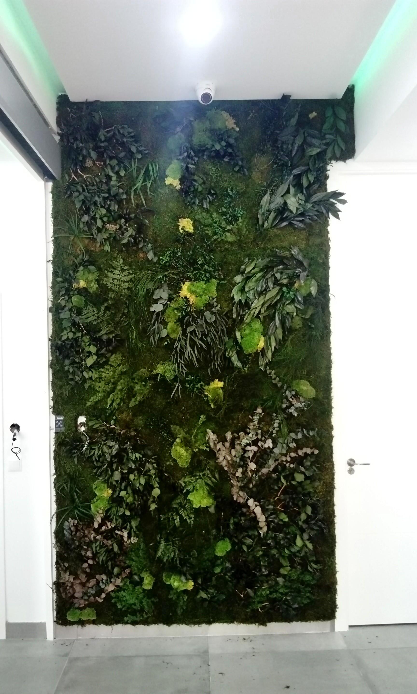 Jardines verticales en sevilla - Jardines verticales sevilla ...