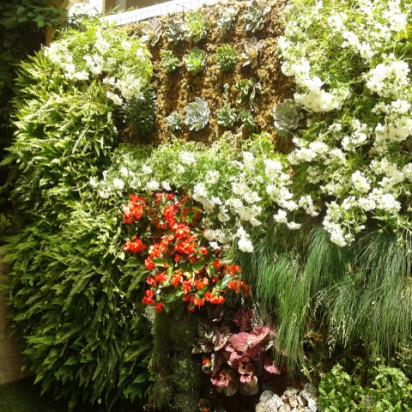 Jardín Vertical vivienda Espartinas