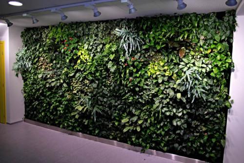 Beneficios de un jardín vertical