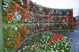 Como-construir-jardines-verticales